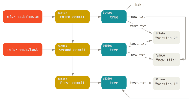 Git directory objects with branch head references included.